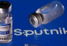 দেশে শুরু হল Sputnik V'র টিকাকরণ, প্রত্যেক ডোজের কত দাম পড়বে জানেন? - West Bengal News 24