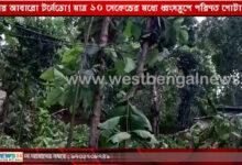 নদীয়ায় আবারো টর্নেডো! মাত্র ১০ সেকেন্ডের মধ্যে ধ্বংসস্তুপে পরিণত গোটা এলাকা - West Bengal News 24